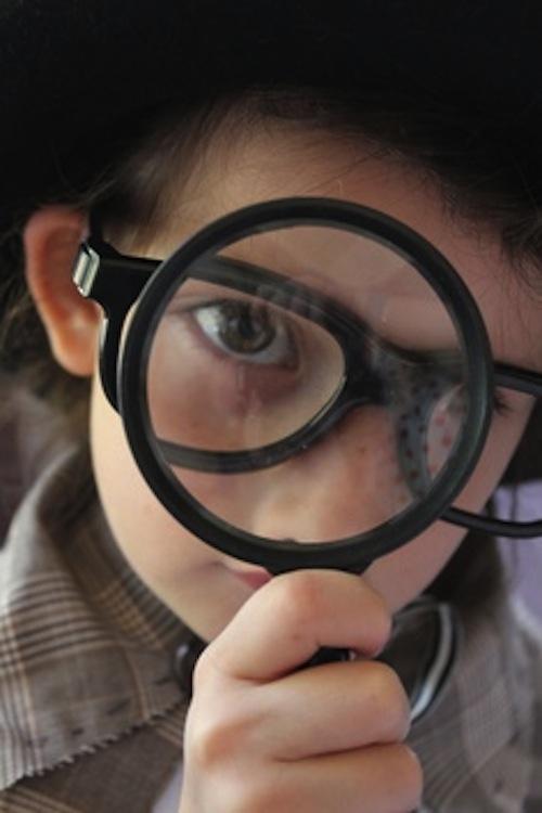 detektif karir blog bukik
